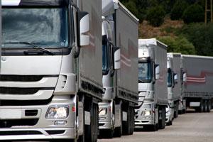 Vehicles We Transport